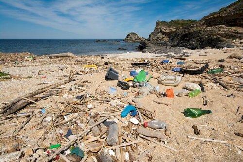 Австралийские учёные призывают общество в очередной раз задуматься об угрозе пластика. Исследование показывает, что она действительно касается каждого из нас. Фото Global Look Press.